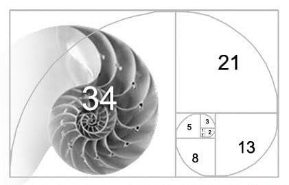 La Nature et les Maths: Fibonacci