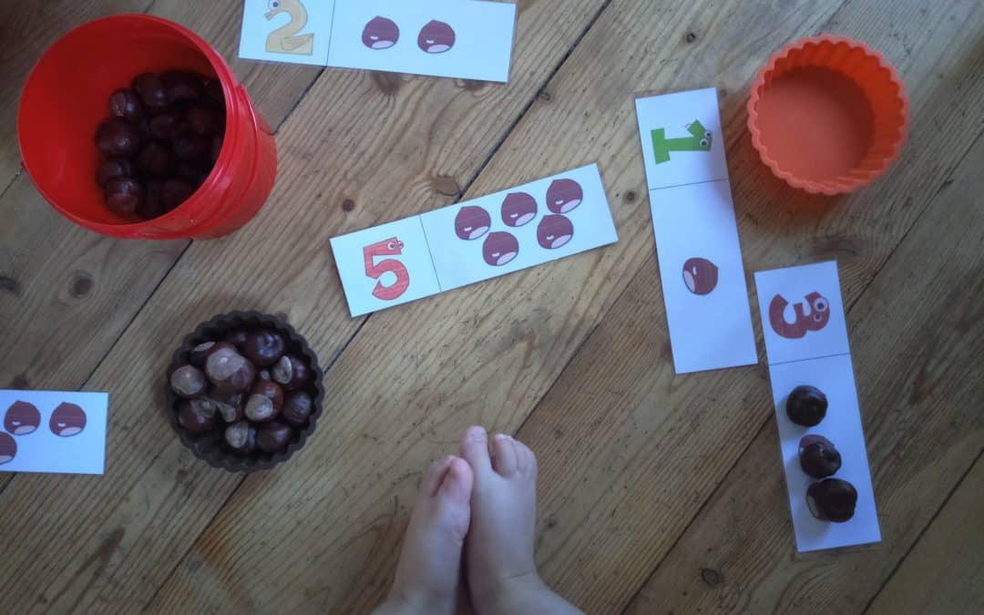 Les ateliers d'automne de Mme Petite