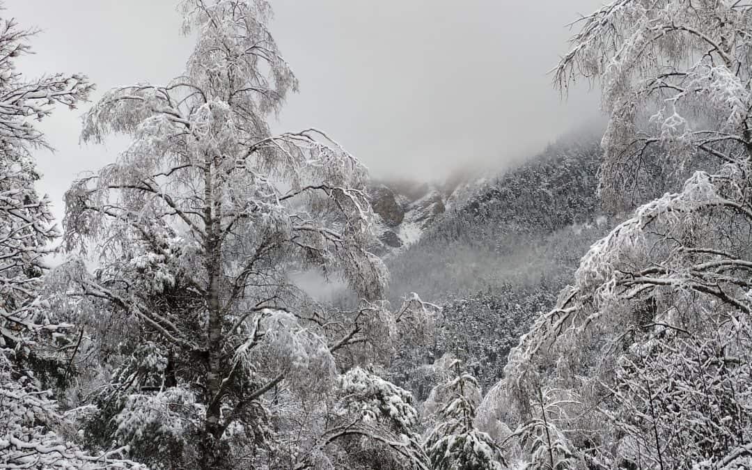Mon bel hiver, roi des saisons…